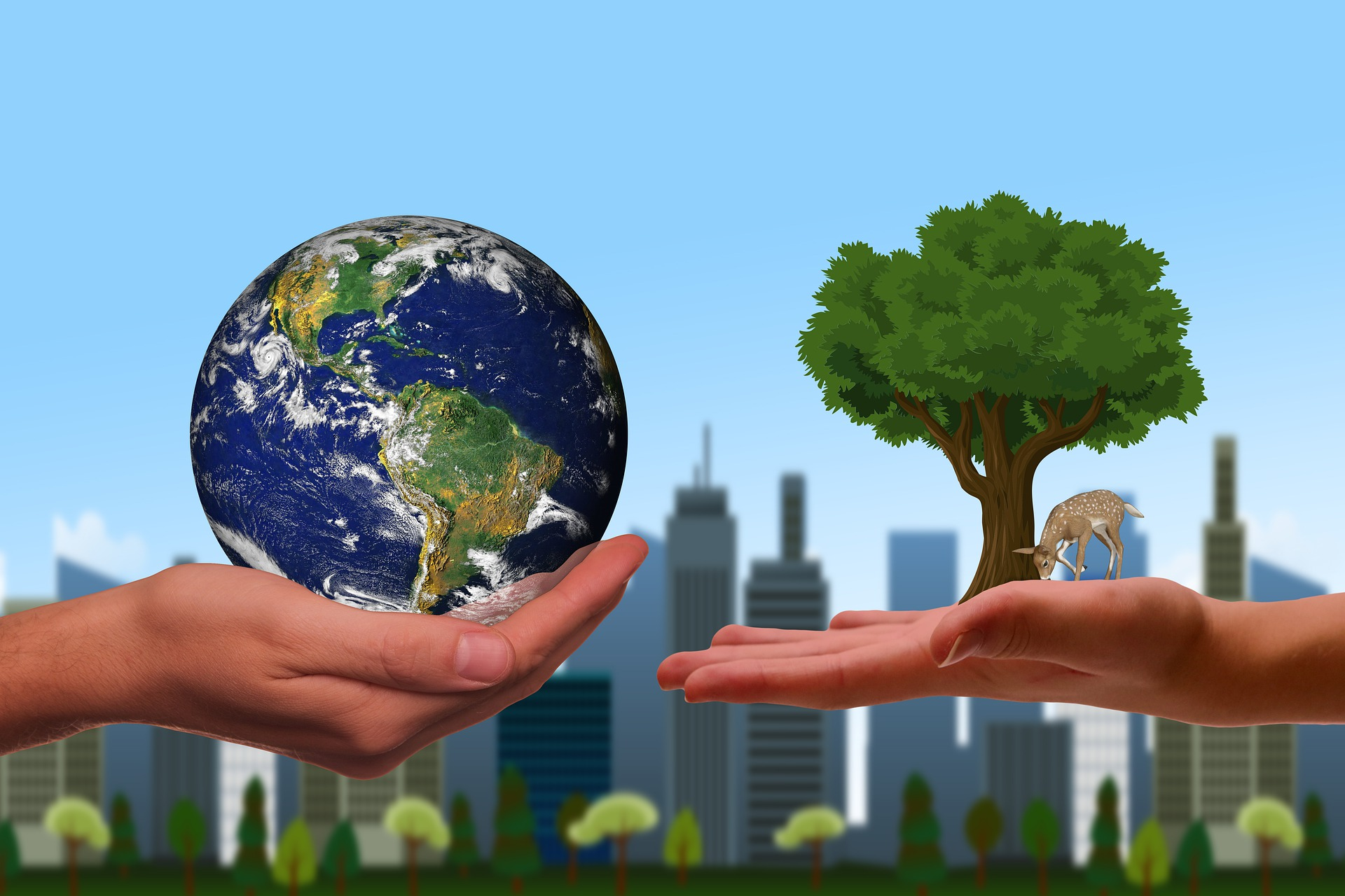 Le secteur du BTP face aux différents enjeux environnementaux étudiés